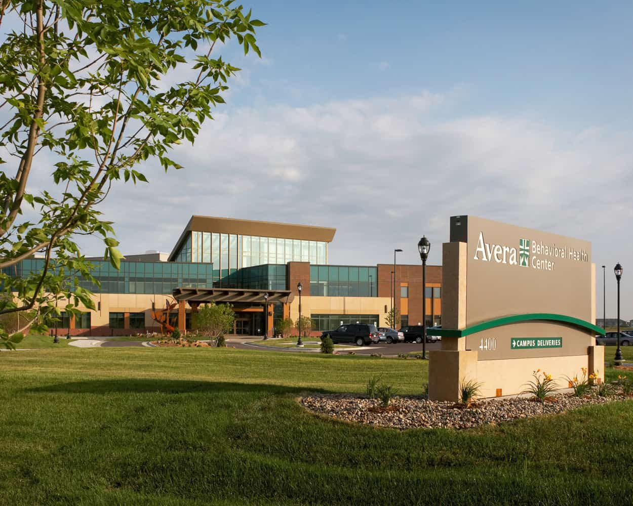 AVERA MCKENNAN HOSPITAL AVERA BEHAVIORAL HEALTH CENTER