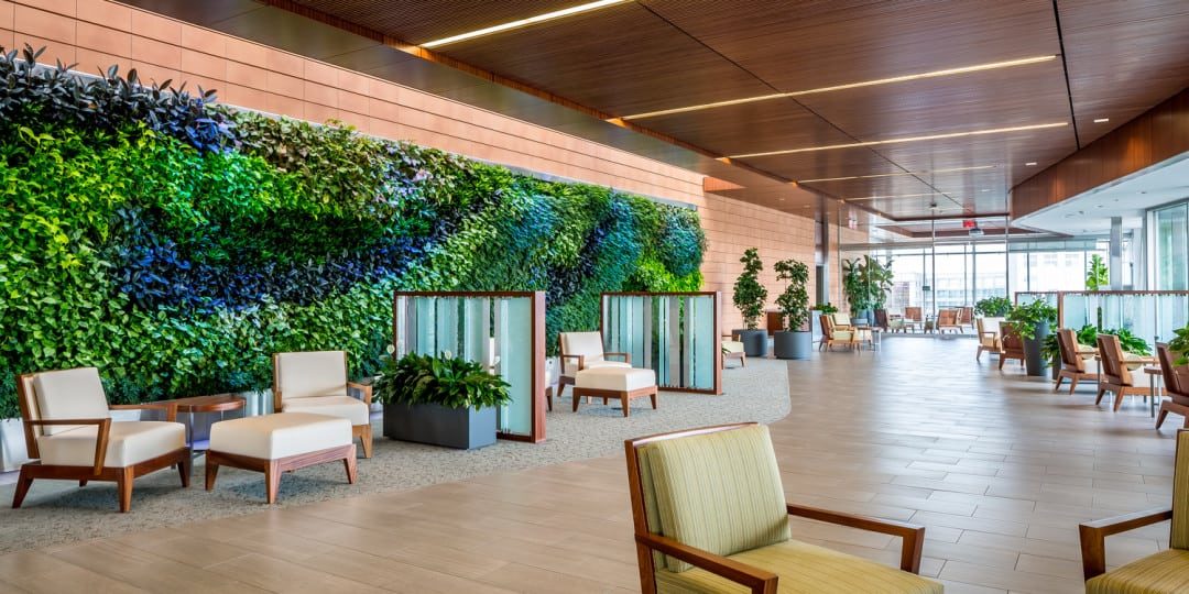 The living green wall at Mayo Clinic Dan Abraham Healthy Living Center Mezzanine Lounge