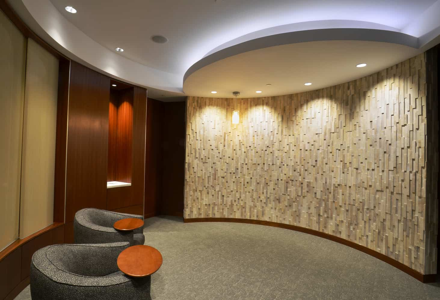 MAYO CLINIC DAN ABRAHAM HEALTHY LIVING CENTER EXPANSION HEALTHY LIVING PROGRAM