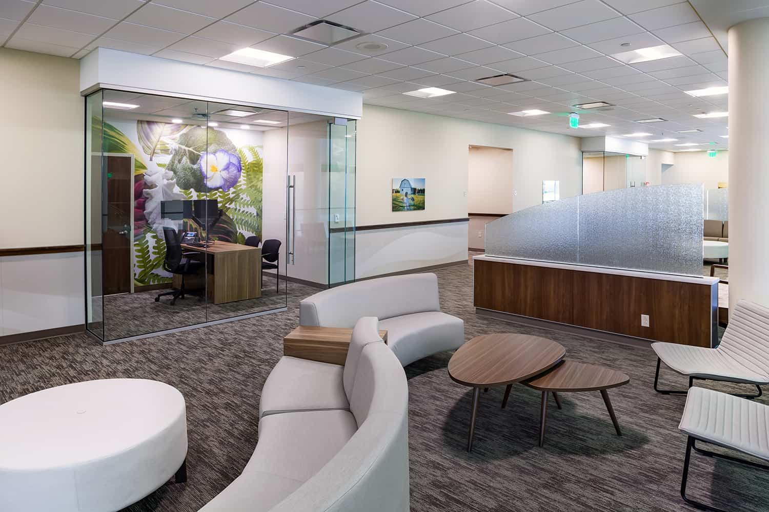 Clinic reception and waiting area with glass-walled consult room and curved seating.